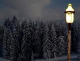 Narnia - Loop 2