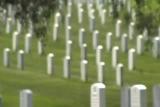 A Memorial Tribute