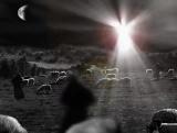 Angel and Shepherds