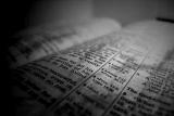 Open Bible Background Loop