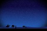 Wisemen at Night Christmas Loop