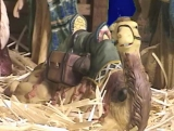Christmas: Talking Nativity Animals 4