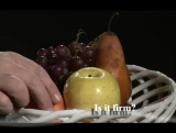 Fruit - Taste Bad