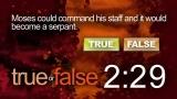 Trivia Countdown 09 of 10 - True or False 2