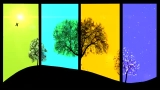 Seasons - Understanding the Seasons of Life