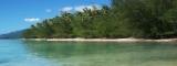 Tropical Ocean Paradise