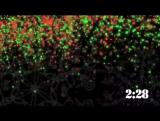 90_Christmas_lights_09_CD