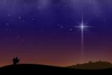 NativityScape Bundle