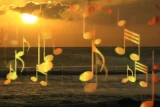 Morning Song Gold