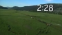 Wildlife Countdown Ver. 2