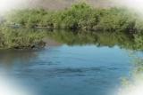 River Loop 6