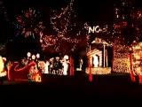 Christmas Tree Lane Loop 4
