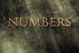 Numbers - SD (480)