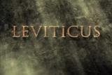 Leviticus - SD (480)