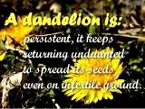 Dandelions Among Us