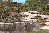 Rock Garden and Plants