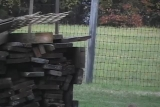 Wood Stack with Music