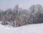 Snow Scenes Countdown