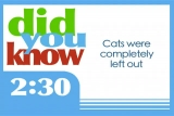 35 Bible Facts Countdown