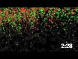 90_Christmas_lights_09_CD